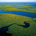 amazonas-colombia-rio