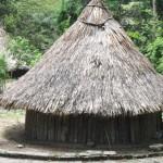 calabazo tayrona park