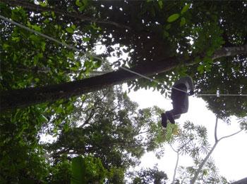 Amazonas tour